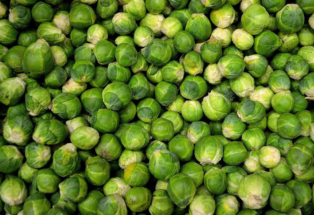 Brussels Sprouts Nutrition