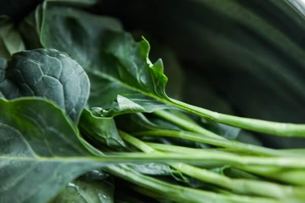 fiber leafy greens