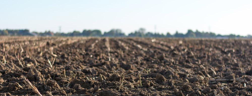 Farmland and soil