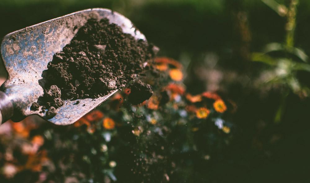 Soil Depletion – Impact on Nutrition?
