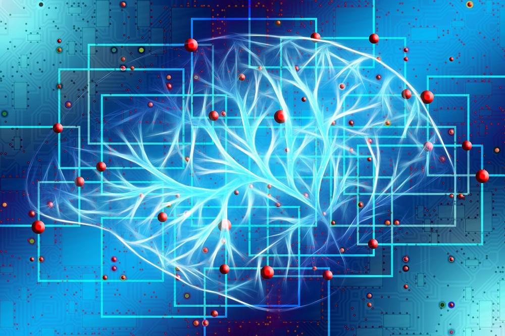 lion's mane nootropic brain effects