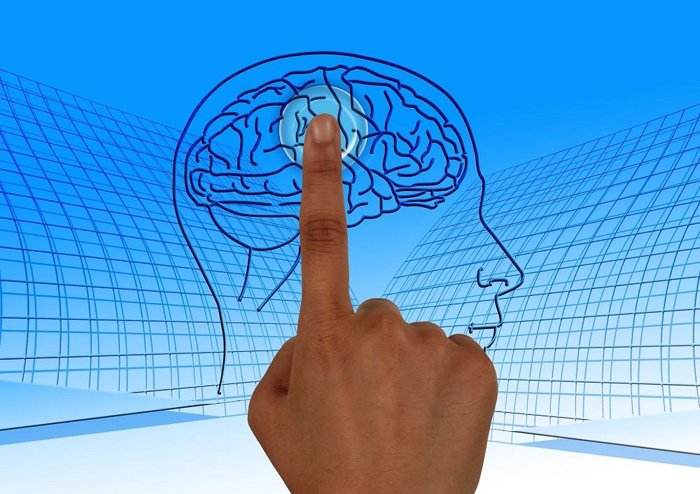 brain cognition improvement