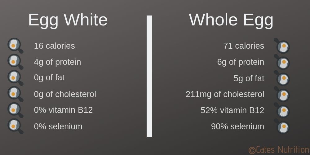 egg white vs whole egg nutrition facts