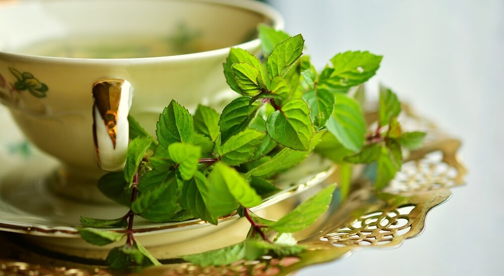 green tea cup with leaves as decoration