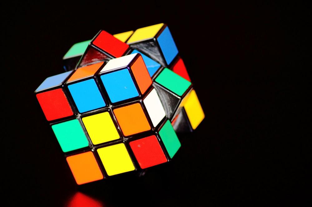 rubiks cube bacopa monnieri brain