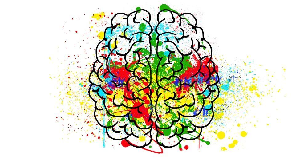 brain sketched choline