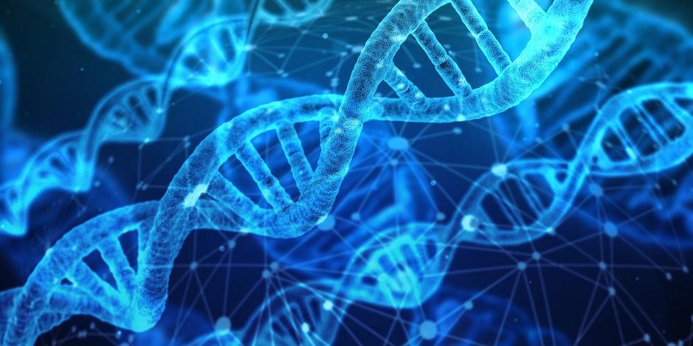 dna genetics multivitamin health benefits