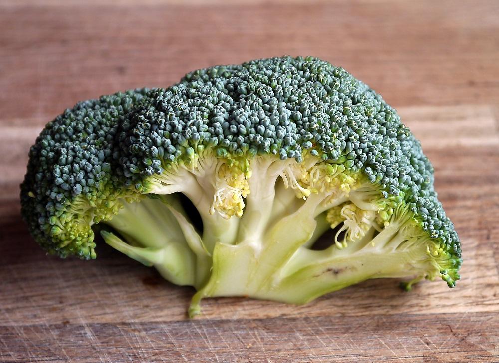 broccoli source of i3c and dim