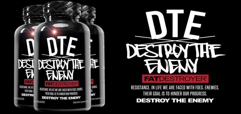 Destroy The Enemy