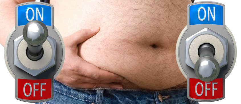 Big Turn Off: Switch In Brain Cause of Obesity
